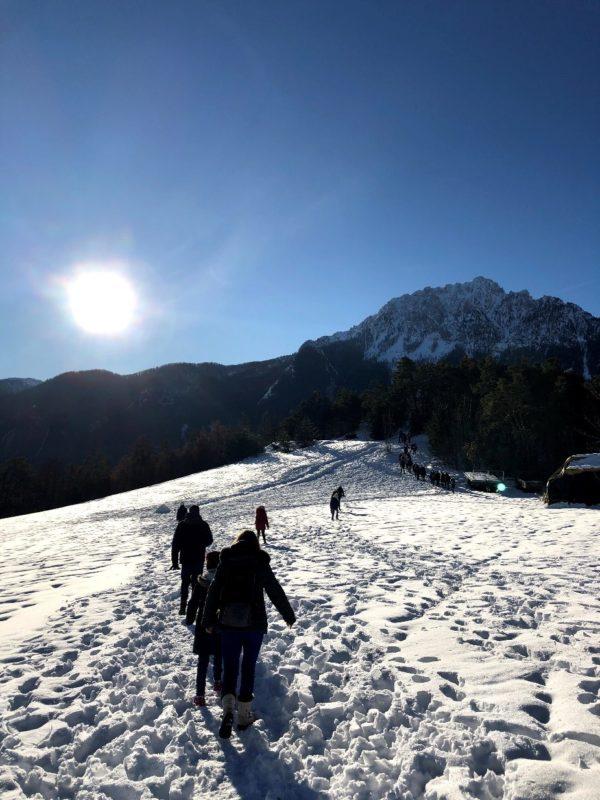 Des enfants du SESSAD le Cèdre Jeunesse de Châtillon à l'assaut des sommets…